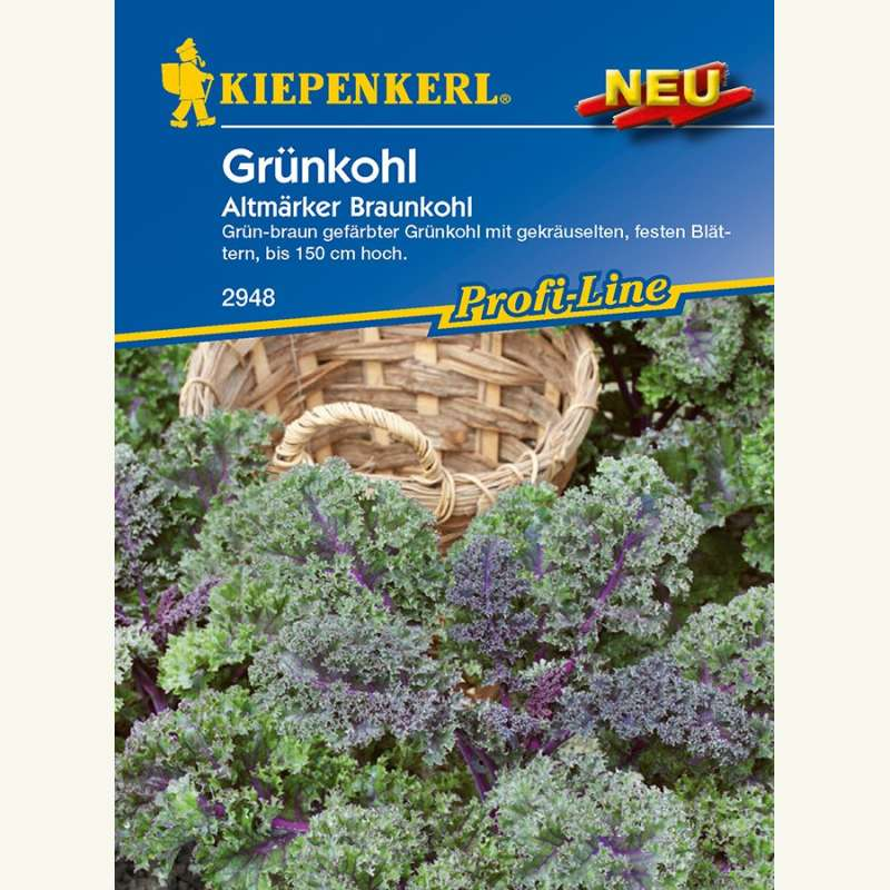 samen saatgut gr nkohl 39 altm rker braunkohl 39 brassica oleracea var sabellica. Black Bedroom Furniture Sets. Home Design Ideas