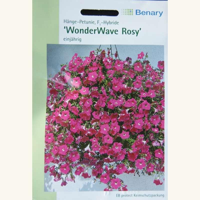 samen saatgut petunie h ngend 39 wonderwave rosy 39 f1 hybride petunia hybrida. Black Bedroom Furniture Sets. Home Design Ideas