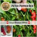 Chili \'Peter Pepper,...