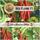 Chili \'Red Flame...