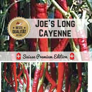 Chili \'Joe\'s Long Cayenne\' - Capsicum annuum - Samen