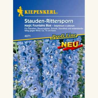 Rittersporn Magic Fountains Blue - Delphinium x cultorum...