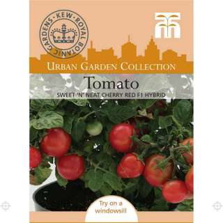 Topf Tomate Sweet n Neat Cherry Red F1 - Lycopersicon...