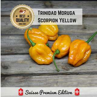 Chili Trinidad Moruga Scorpion Yellow - Capsicum chinense...