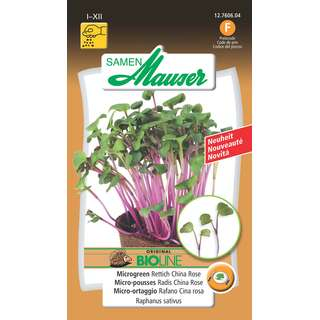 Microgreen Rettich China Rose - Raphanus sativus - Samen