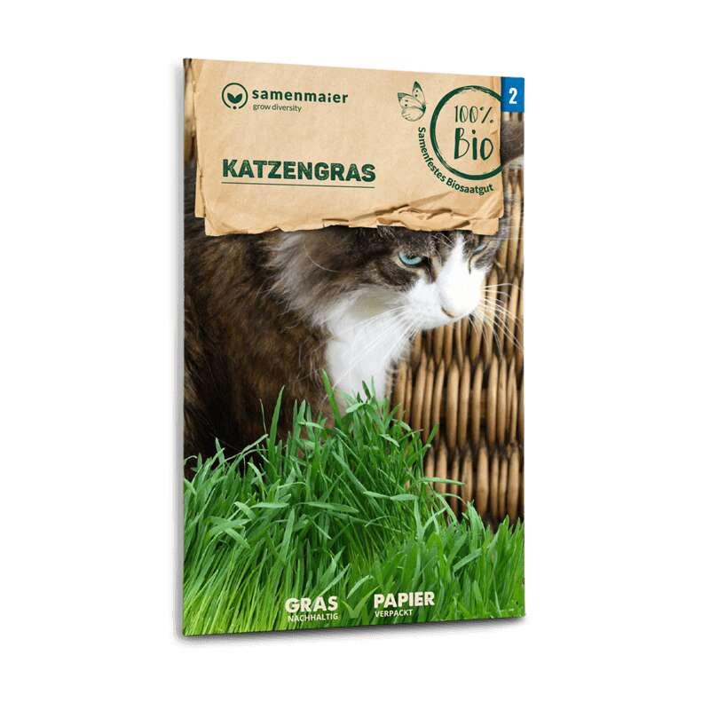 Saatmischung f/ür 5 T/öpfe Katzengras Samen 10 g Katzengrassamen