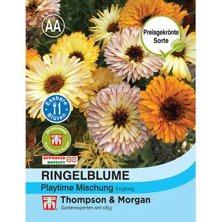 Ringelblume Playtime Mischung - Calendula officinalis -...