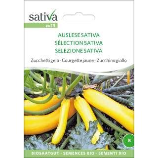 zucchetti zucchini 39 soleil f1 39 samen online kaufen. Black Bedroom Furniture Sets. Home Design Ideas