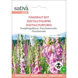 Fingerhut rot - Digitalis purpurea  - BIOSAMEN