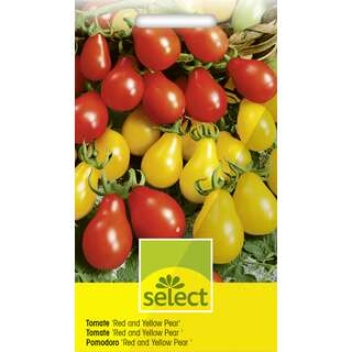 Tomate, Cherry Red Pear Yellow Pearshaped - Lycopersicon...