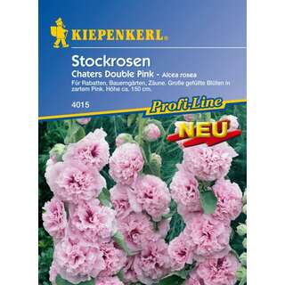 Malve, Stockrose Chaters Double Pink, Mischung - Alcea...