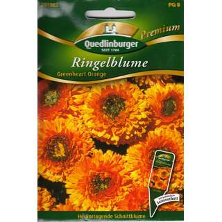 Ringelblume Greenheart Orange - Calendula officinalis -...