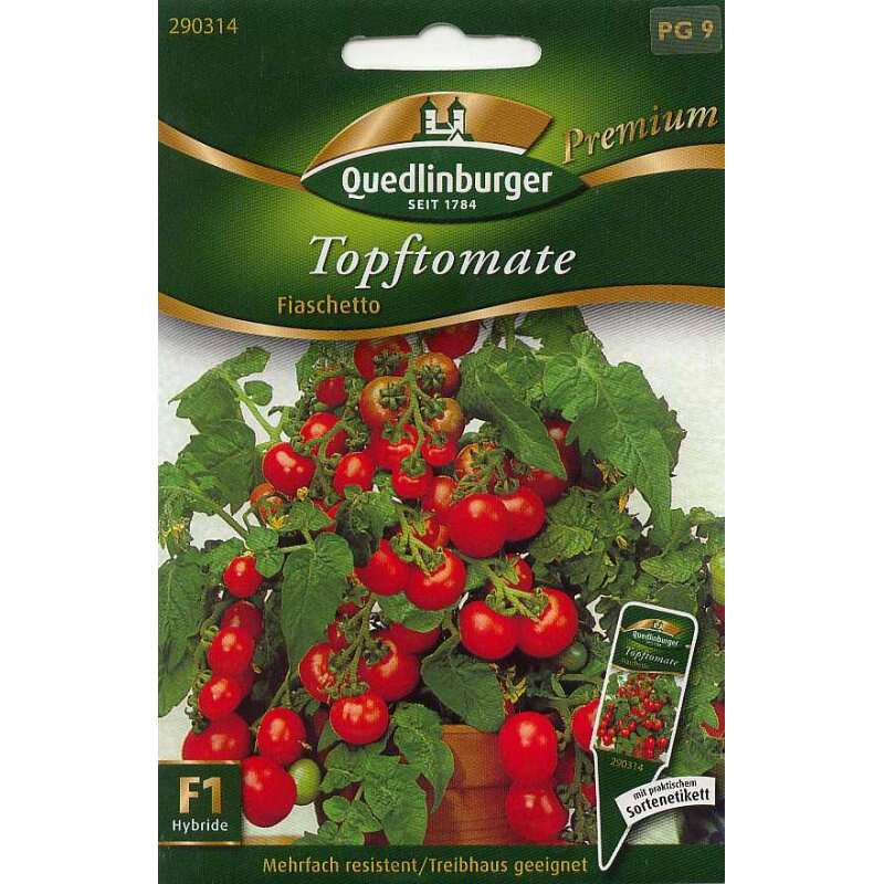 samen saatgut topf tomate 39 fiaschetto 39 lycopersicon. Black Bedroom Furniture Sets. Home Design Ideas