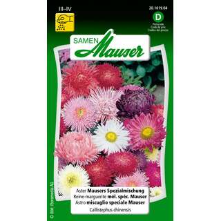 Aster, Mausers Spezialmischung - Callistephus chinensis -...