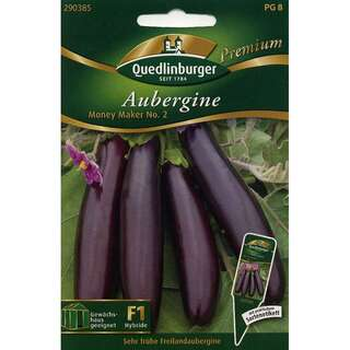 Aubergine, Eierfrucht Money Maker No 2 F1 - Solanum...