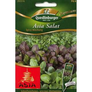 Asia Salat Spicy Mischung - Brassica campestris, japonica...