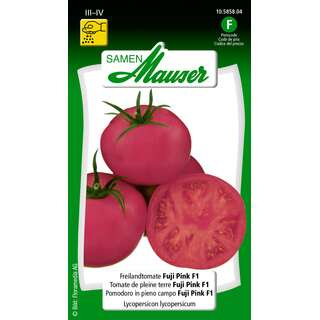 Tomate, Freilandtomate Fuji Pink F1 - Lycopersicon...