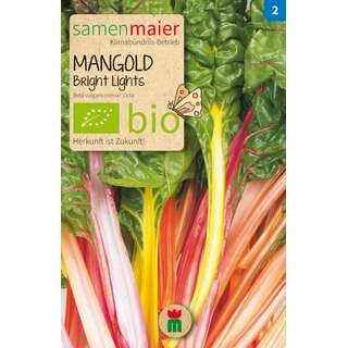 Mangold Bright Lights - Beta vulgaris convar. cicla  -...